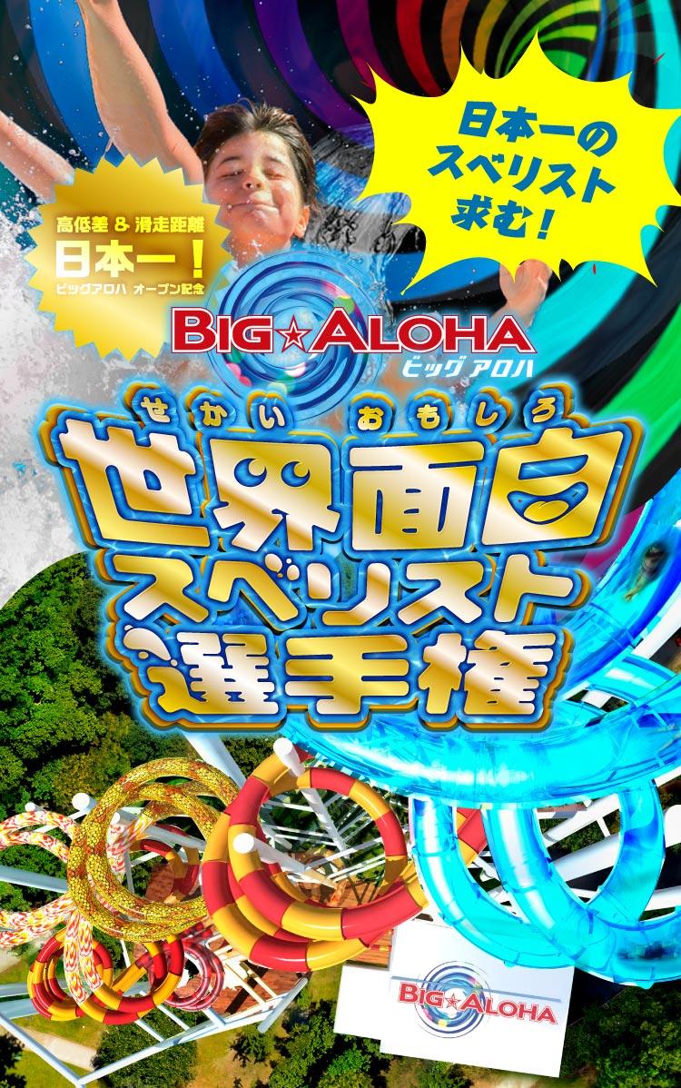 BIG ALOHA(ビッグ アロハ) 日本一のスベリスト求む